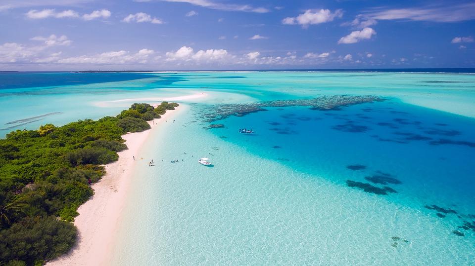 Top 10 des activités en Martinique