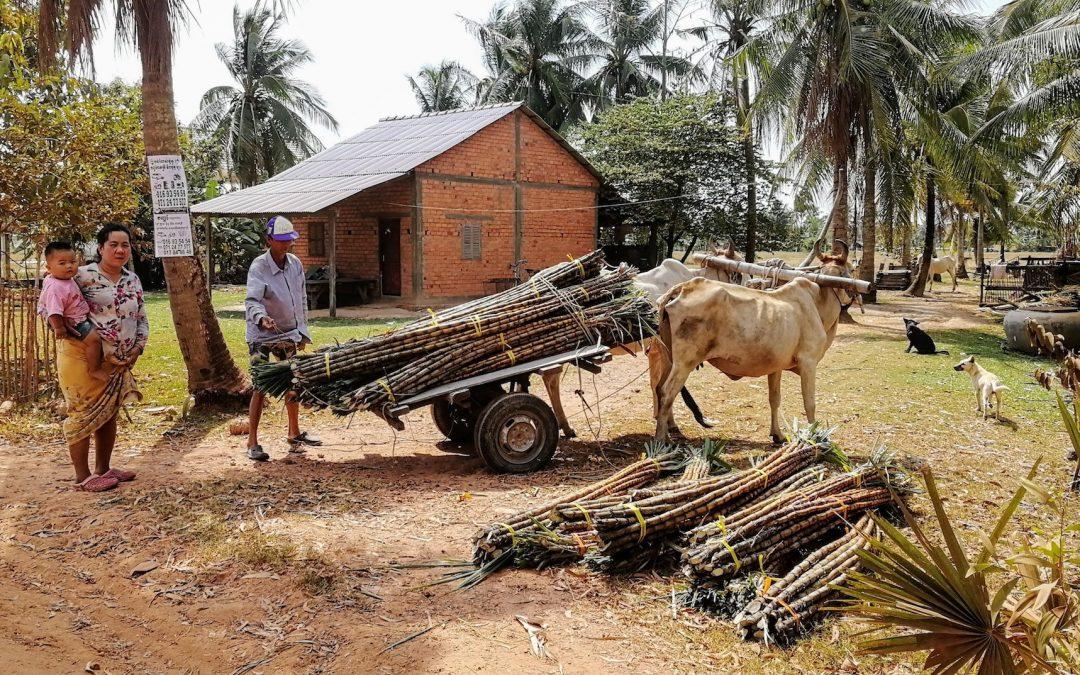 Comment passer la frontière du Cambodge au Vietnam ?