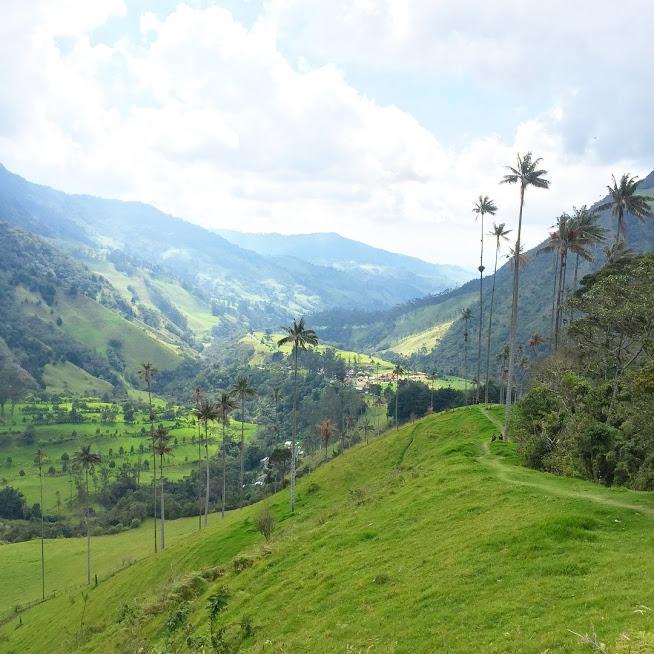 Salento et la Vallée de Cocora